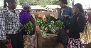 Đi tìm giải pháp phát triển bền vững trong hệ sinh thái nông nghiệp