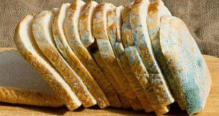Có nguy hiểm không nếu ăn bánh mì đã bị mốc?