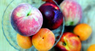Hoa quả trông như thế nào trước khi được con người thuần hóa?