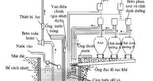 Hướng dẫn chi tiết kỹ thuật thủy canh (phần 5)