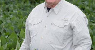 USDA không có kế hoạch ban hành quy định quản lý đối với cây trồng chỉnh sửa gen