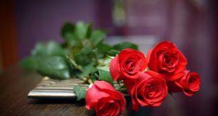 Ý nghĩa các loại Hoa Hồng?